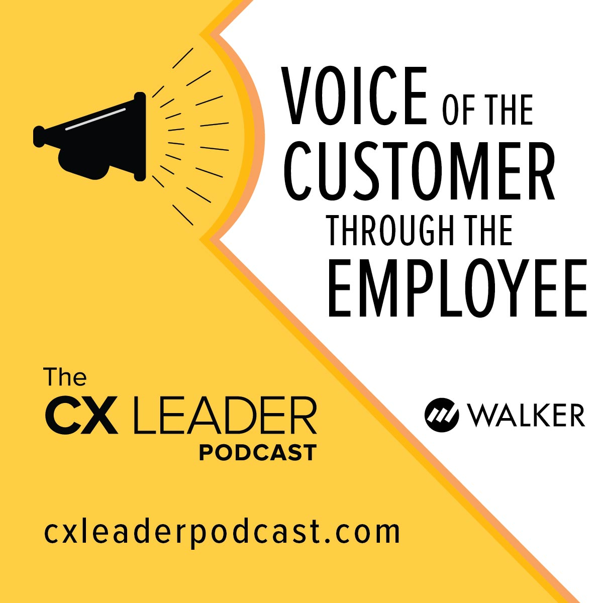 Voice of the Customer through the Employee