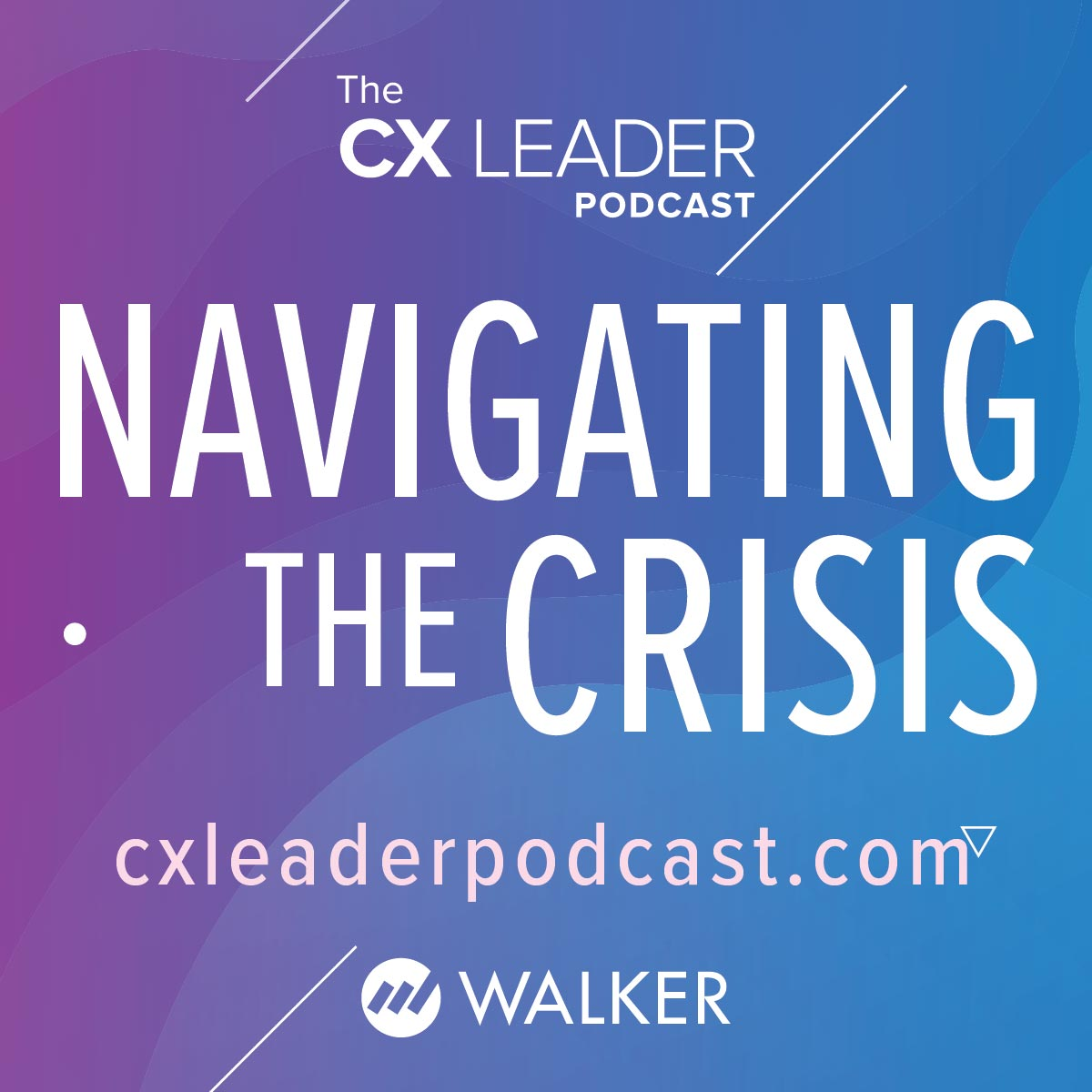 Navigating the Crisis